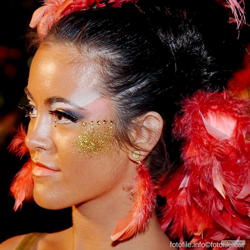 CarnavalSitges2013_01415_v2